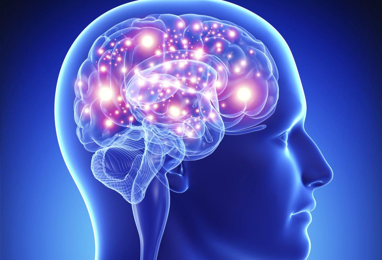 Cerebro como Prueba de la Existencia de Dios