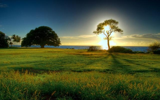 Naturaleza como prueba de la existencia de Dios